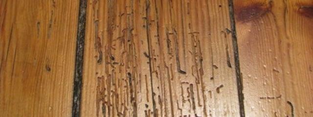 Humidity and Hardwood Floors - Woodmood