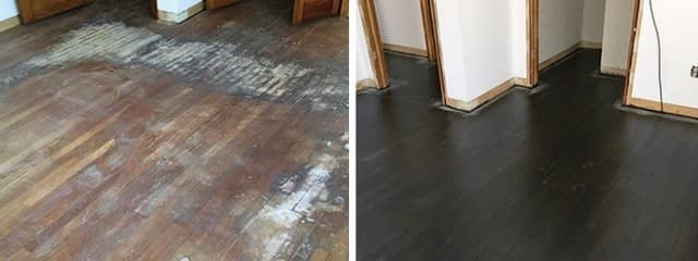 Hardwood Floors and Pet Stains - Wood Mood