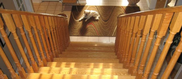 stair renovations